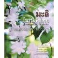 มะลิในเมืองไทย : Jasmines in Thailand (ปกแข็ง)