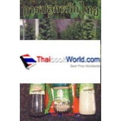 การปลูกพริกไทย