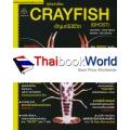 คู่มือนักเลี้ยง Crayfish อัญมณีมีชีวิต (Ghost)