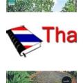 Tropical Rainforest & European Garden (ปกแข็ง)